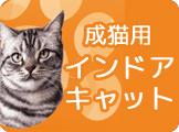 アイムス 猫 インドアキャット