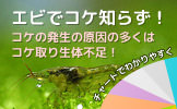 繝溘リ繝溘レ繝槭お繝・ width=