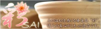 睡蓮鉢 彩