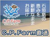 石垣島 C.P.Farm直送