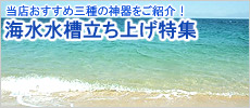 海水飼育 三種の神器
