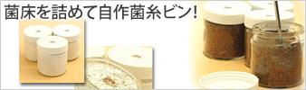 自作菌糸ビン