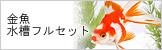 金魚水槽フルセット