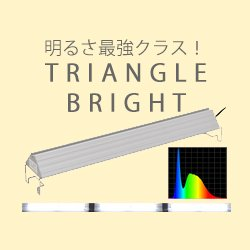 TRIANGLE BRIGHT