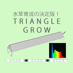 TRIANGLE GROW