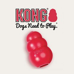愛犬との暮らしがもっとハッピーに。知育玩具 KONG
