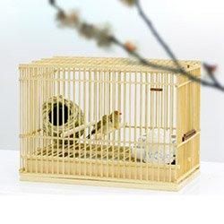 小鳥に優しい竹カゴ