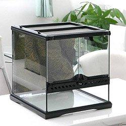爬虫類のためのケージ&水槽の選び方