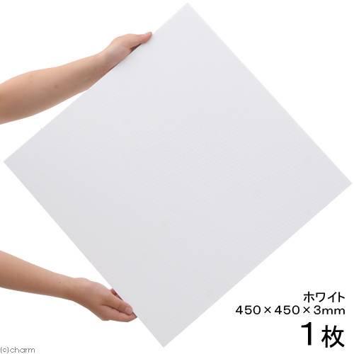 プラパール 45cmキューブ水槽用マット ホワイト 45×45cm 1枚