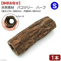 天然素材 パコツリー ハーフ ハーフ S(長さ175~300mm 内径40~59mm)