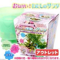 アウトレット品 日本動物薬品 ニチドウ おねがい!わたしのサラダ 容器色種子おまかせ 家庭菜園