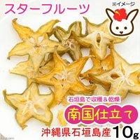 南国仕立て 沖縄県石垣島産 スターフルーツ 10g 小動物用のおやつ 国産