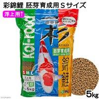 彩錦鯉 胚芽育成用 Sサイズ 5kg 餌 飼料
