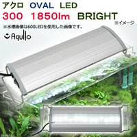 アクロ OVAL LED 300 1850lm BRIGHT Aqullo Series