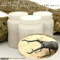 ギラファノコギリクワガタ(フローレス産)幼虫(3匹) + XL-POT ヒラタケ 800cc(3本)説明書付