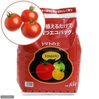 エコバッグで育てる 簡単トマト栽培セット(ぜいたくトマト) 家庭菜園