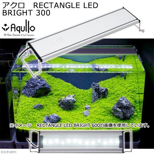 アクロ RECTANGLE LED BRIGHT 300 1600lm