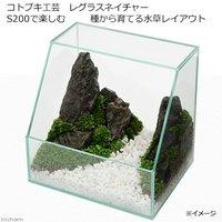 コトブキ工芸 kotobuki レグラスネイチャー S200で楽しむ種から育てる水草レイアウト