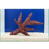一点物 Real Reef Rock Branch(リアルリーフロックブランチ)(LLサイズ) RR-052(1個)