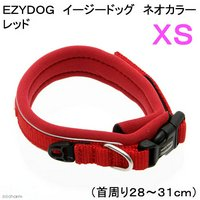 犬 首輪 イージードッグ ネオカラー XS (首周り28~31cm) レッド 小型犬用