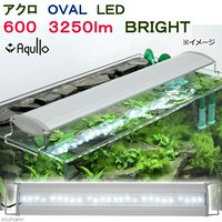 アクロ OVAL LED 600 3250lm BRIGHT Aqullo Series 60cm水槽用照明