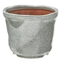 信楽焼 植木鉢 白マット中深 3号 多肉植物 山野草