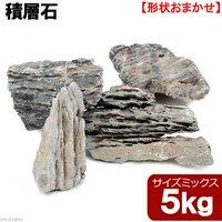 形状お任せ 積層石 サイズミックス 5kg