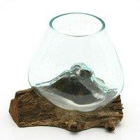一点物 ラウンドガラス ノーマルS 流木スタンド付(861168)コケ テラリウム ガラス インテリア 瓶