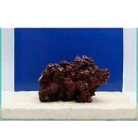 一点物 Real Reef Rock(リアルリーフロック)(Lサイズ) RR-019(1個)
