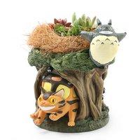 ジブリプランター 多肉寄せ植え トトロが飛んでいる(植え込み完成品)(1鉢)