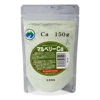詰め替え用 マルベリーCa 両生爬虫類専用 飼料添加剤 150g 爬虫類 鳥 インコ サプリメント 添加剤