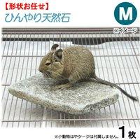 ひんやり天然石 M 形状おまかせ デグー モモンガ 保冷用品