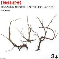 形状お任せ 煮込み済み 極上流木 Lサイズ(30~45cm) 3本