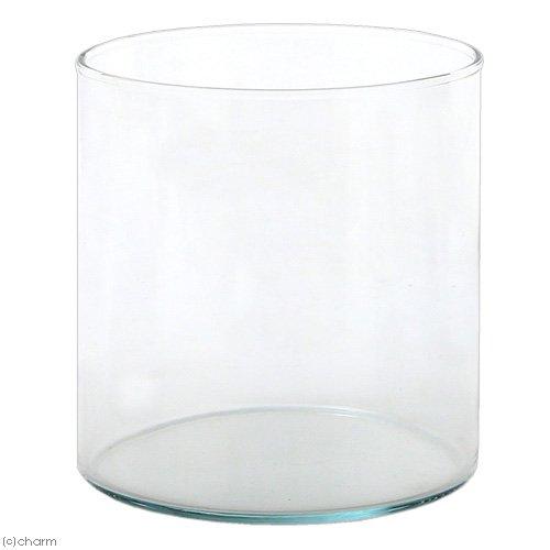 アウトレット品 グラスタンブラー スモール 直径14.0×高さ15.0cm(容量2L)