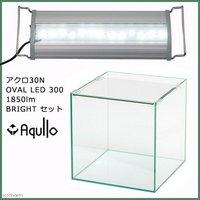 アクロ30N OVAL LED 300 1850lm BRIGHT セット
