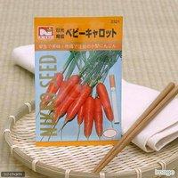 野菜の種 ベビーキャロット 品番:2321 家庭菜園