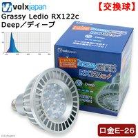 ボルクスジャパン Grassy LeDio RX122c Deep/ディープ