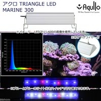 アクロ TRIANGLE LED MARINE 300 20000K Aqullo Series