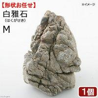 形状お任せ 白雅石 M 1個