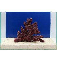 一点物 Real Reef Rock Fancy Branch(Lサイズ) RR-007(1個)