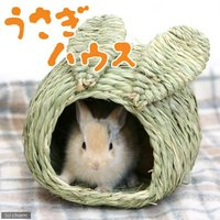 川井 KAWAI うさぎハウス S