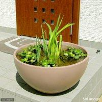 睡蓮鉢(メダカ鉢) 凛 RIN 丸型 ライトブラウン M 睡蓮鉢金魚鉢メダカ鉢