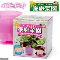 日本動物薬品 ニチドウ ボクとワタシの家庭菜園 ベビーリーフ 家庭菜園