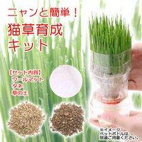 猫草 ニャンと簡単 猫草育成キット 種土ウールマットセット 説明書付 猫草