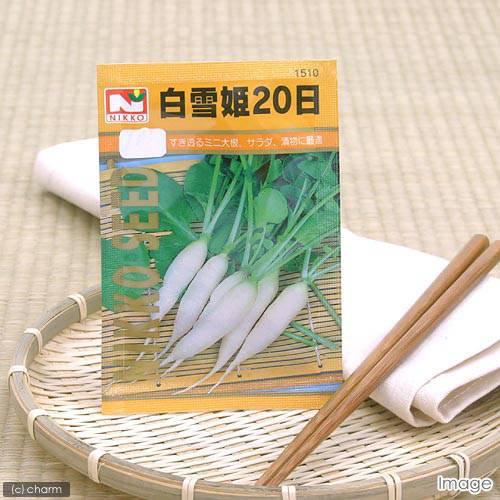 野菜の種 白雪姫20日大根 品番:1510 家庭菜園