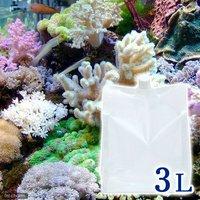 足し水くん 天然海水(海洋深層水) 3リットル
