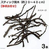 形状お任せ 煮込み済み スティック流木(約20~40cm) 3本セット