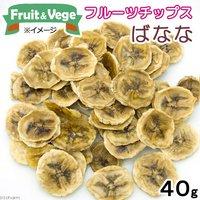 フルーツチップス バナナ 40g 国産 犬用おやつ PackunxCOCOA フルーツ&ベジ