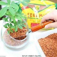 セラミスグラニュー(室内容器栽培用土) 100mL