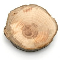 国産 天然素材の切り株ステージ うすいりんごの木 M 1個 かじっても安心 かじり木